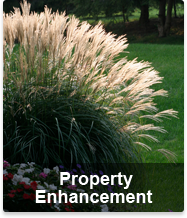 Essex Old Saybrook Madison Guilford Ct Landscape Services